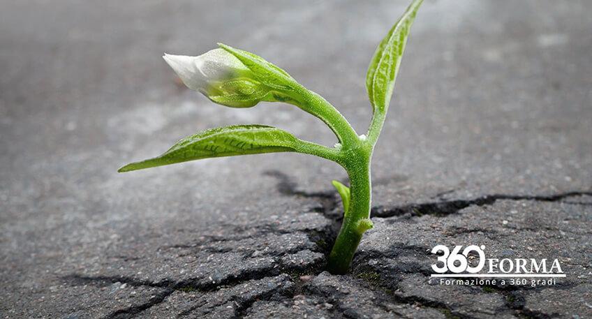 Pianificazione e Riuso urbano: stop alla cementificazione selvaggia del suolo